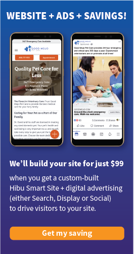 $99 Website Build Promotion